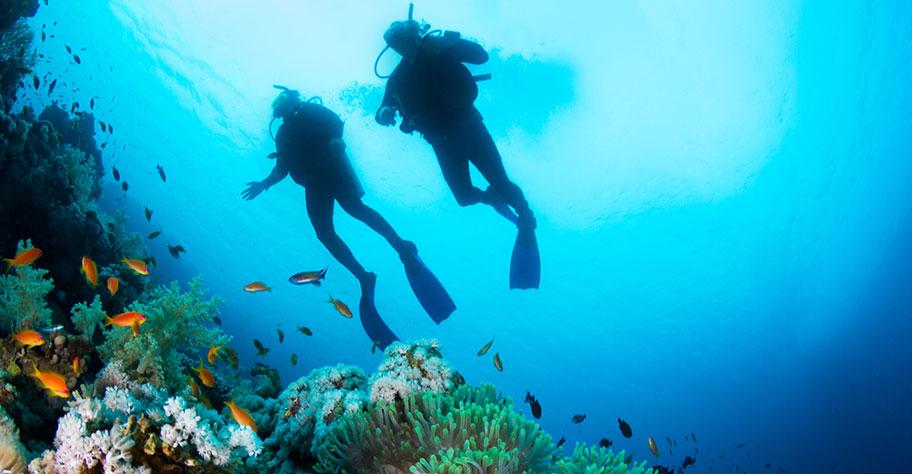 Malediven Tauchen Tipps