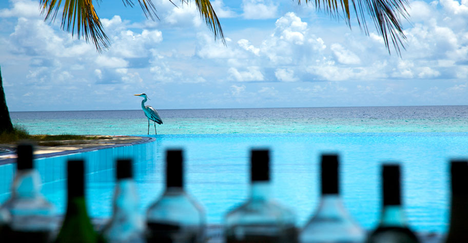 Malediven Alkohl Verbot